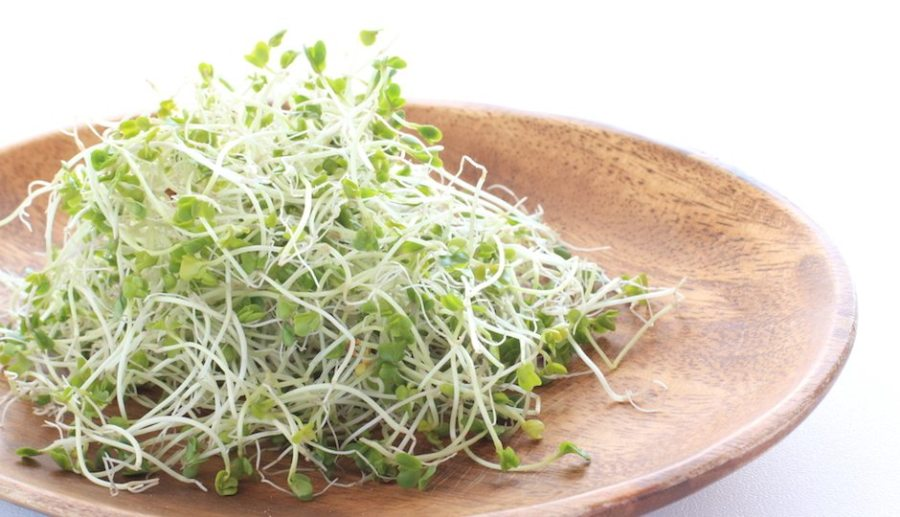 Health Benefits of Eating Sprouts for Your Hair.jpg